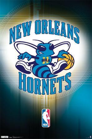 Hornets Logo 2011