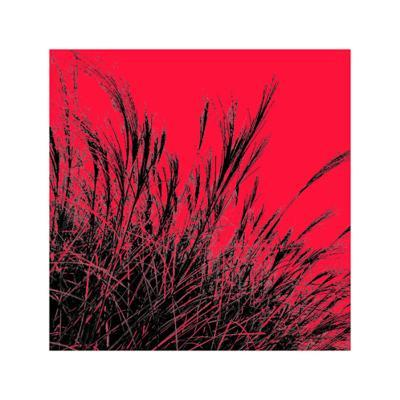 Grass (red), c.2011