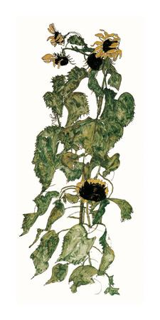 Sunflowers, c.1917