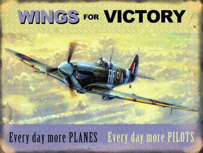 Wings for Victory - Spitfire
