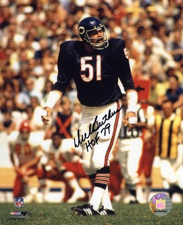 Dick Butkus Chicago Bears - Action with HOF 79  Autographed Photo (Hand Signed Collectable)