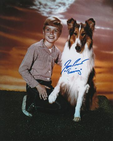 Jon Provost -Lassie with Timmy Inscription Autographed TV Photo (Hand Signed Collectable)