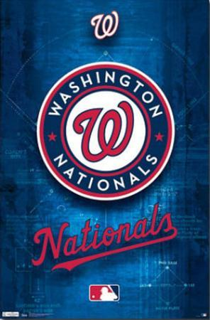 Washington Nationals Logo 2011
