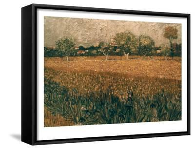 Van Gogh: Arles, 1888