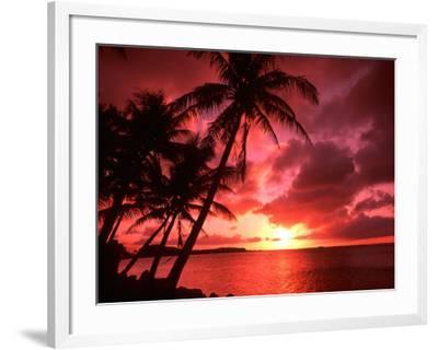 Palms And Sunset at Tumon Bay, Guam