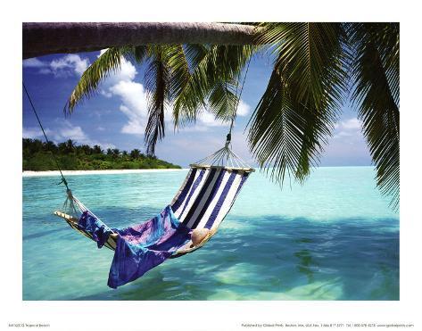 Attractive Tropical Beach (Hammock Under Tree) Art Poster Print Masterprint At  AllPosters.com