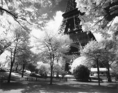 Afternoon in Paris (Eiffel Tower, Park)