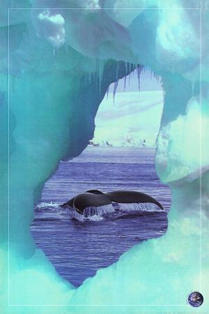 Whale Tale, Save Our Planet (Whale)