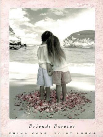 Friends Forever - China Cove, Point Lobos, Art Poster Print