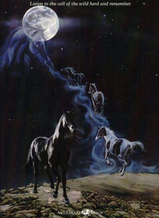 No More Night Mares Horses under Moon Art Print Poster