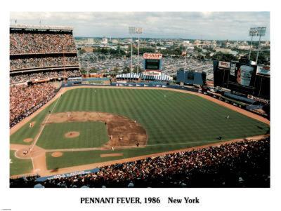 Ira Rosen New York Mets Pennant Fever Shea Stadium 1986 Sports Poster Print