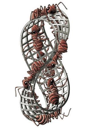 M.C. Escher (Mobius Strip II) Art Poster Print