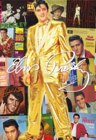 Elvis Presley Albums Music 3-D Lenticular Poster Print