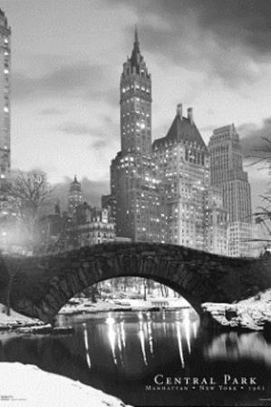 New York City Central Park Bridge 3-D Lenticular Photo Print Poster