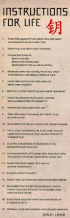Instructions For Life Dalai Lama Art Poster Print