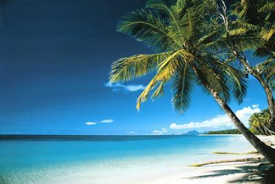 Beach Landscape Photos