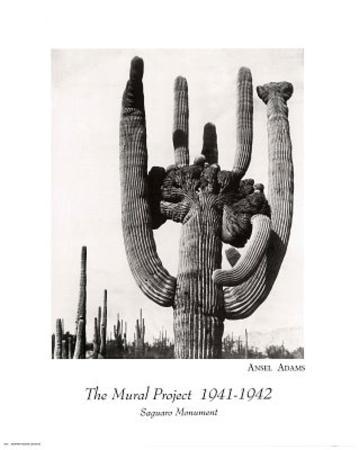 Ansel Adams Mural Project Saguaro Monument Art Print Poster