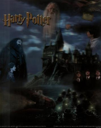 Harry Potter Movie Collage 3-D Lenticular Poster Print