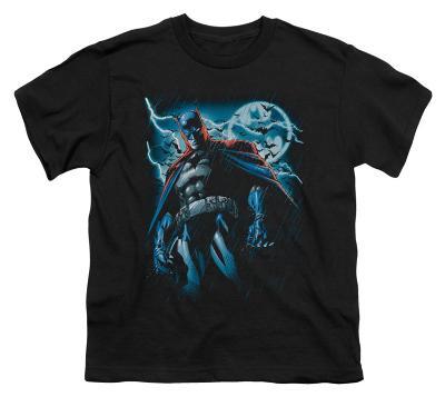 Youth: Batman - Stormy Knight