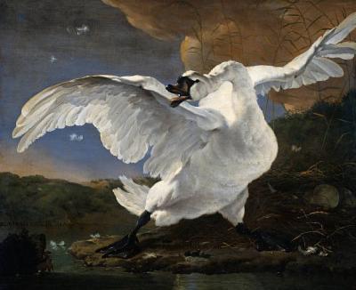 Jan Asselijn (The Threatened Swan) Art Poster Print