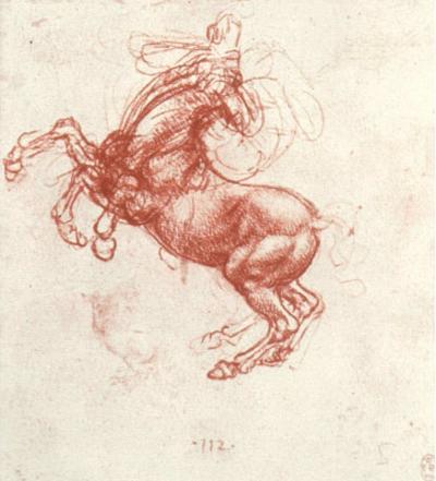 Leonardo da Vinci (Study of a rebel horse) Art Poster Print