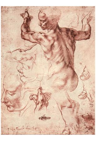 Michelangelo Buonarroti (Studies for the vault frescoes of the Sistine Chapel: Libyan Sibylle)