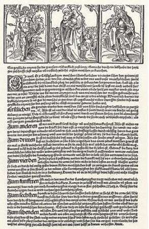 Erhard Schoen (Spiritual Medicaments against the plague) Art Poster Print