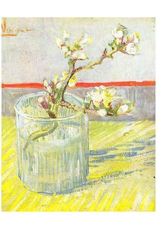 Vincent Van Gogh (Almond blossom branches) Art Poster Print