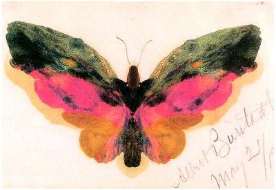 Albert Bierstadt Butterfly Art Print Poster