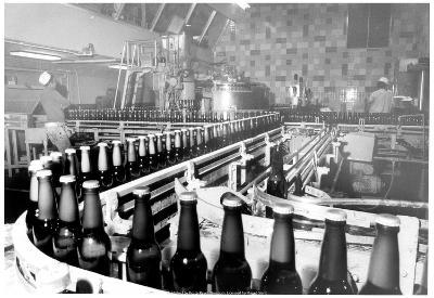 Beer Bottling Archival Photo Poster