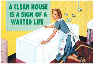 A Clean House is a Sign of a Wasted Life Funny Poster
