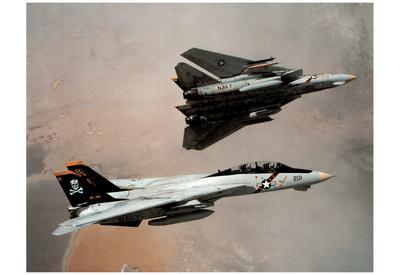 F-14 Tomcats (In Air) Art Poster Print