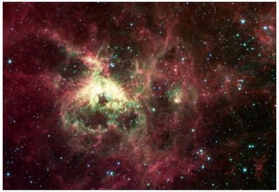Tarantula Nebula Space Photo