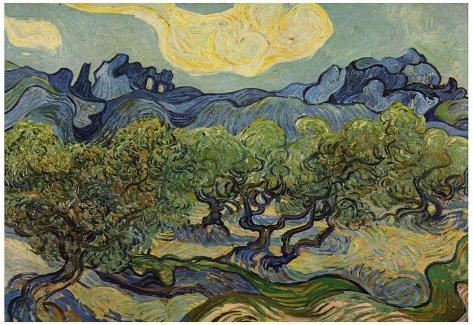 Vincent van goghs the olive trees