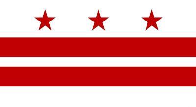 Washington DC Flag Poster Print