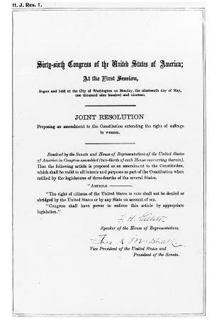 19th Amendment (Women's Right to Vote) Art Poster Print