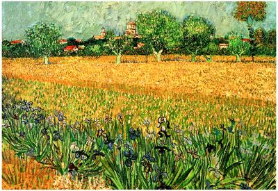 Vincent Van Gogh View of Arles with Irises in the Foreground Art Print Poster
