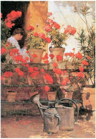 Childe Hassam Red Geraniums Art Print Poster