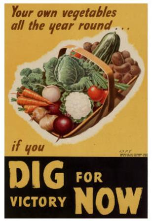 Dig for Victory WWII War Propaganda Art Print Poster