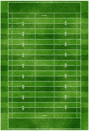 Football Field Gridiron Sports Poster Print