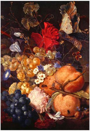 Jan van Huysum (Fruits, flowers and insects) Art Poster Print