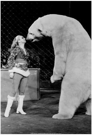 Polar Bear Kiss Archival Photo Poster