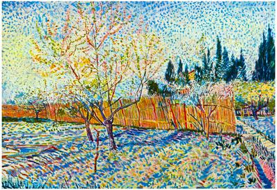 Vincent Van Gogh Orchard with Cypress Art Print Poster