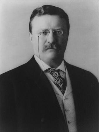 Theodore Roosevelt (Portriat) Art Poster Print