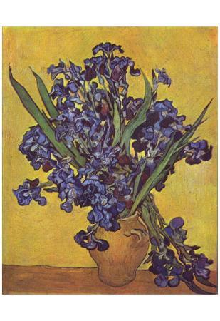 Vincent Van Gogh (Still Life with irises) Art Poster Print