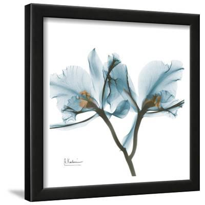 Orchids in Blue