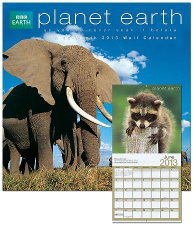 Planet Earth - 2013 Calendar