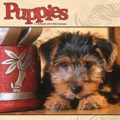 Puppies - 2013 Mini Calendar