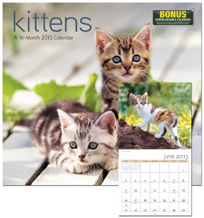 Kittens - 2013 Wall Calendar