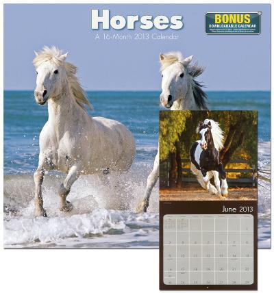 Horses - 2013 Wall Calendar
